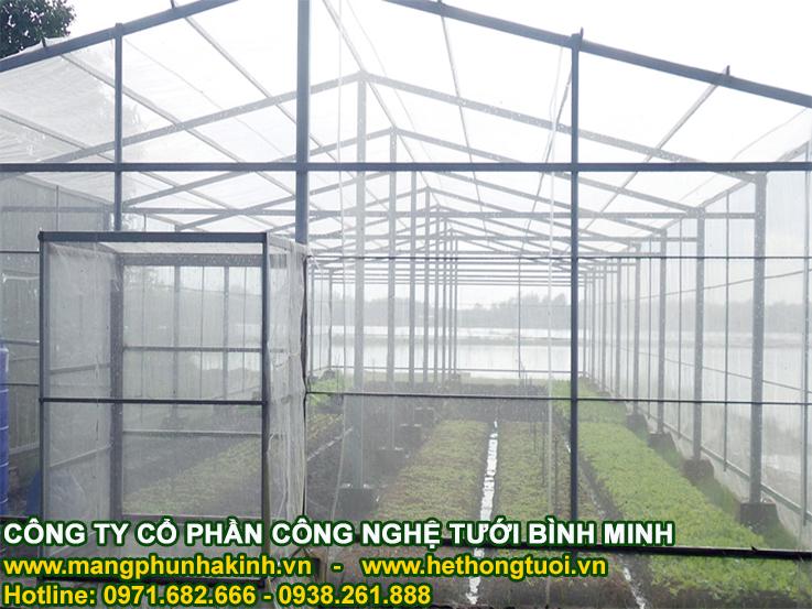 Cách làm nhà kính trồng rau đơn giản của kỹ sư người Anh