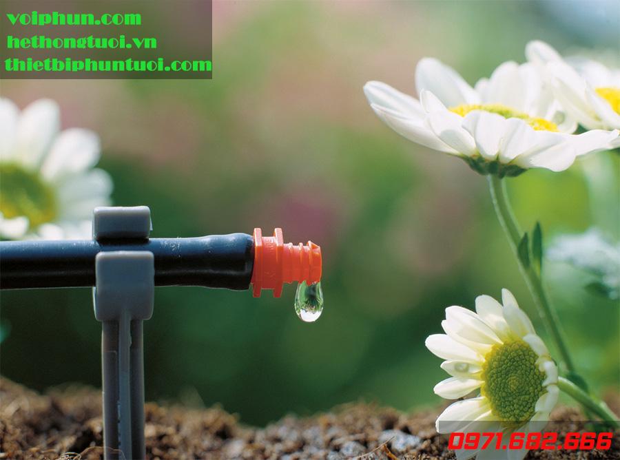 Cung cấp hệ thống tưới nhỏ giọt – Giá rẻ – Chất lượng